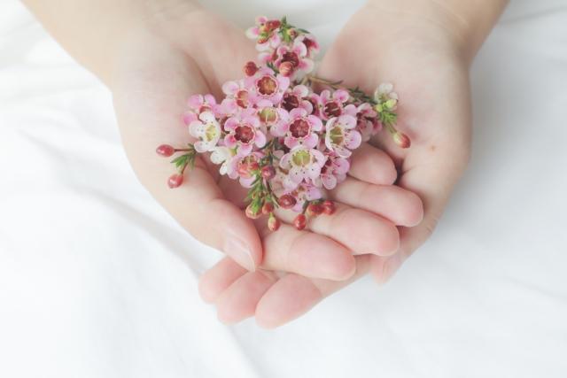 手の中に可愛い花